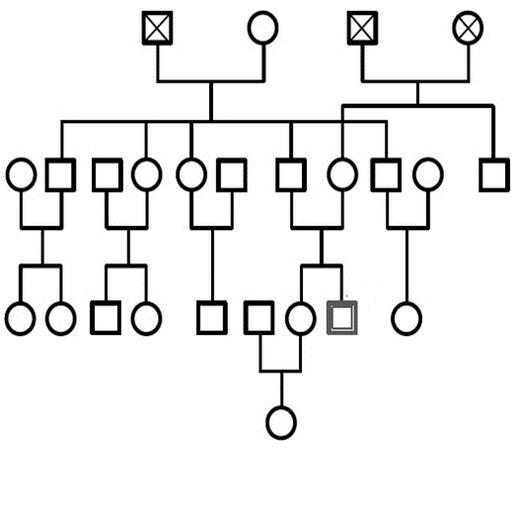 géno 2